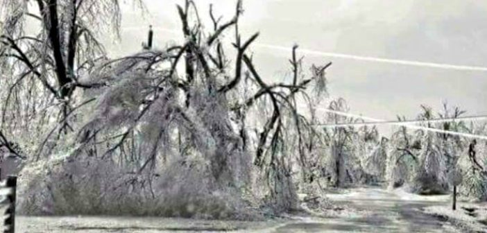 Remembering the Day After Christmas Ice Storm of 2000