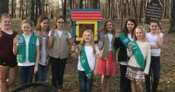 girlscoutlibrariesfeature