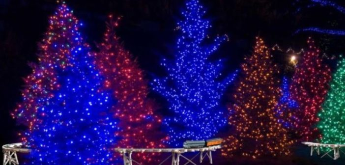 Downtown Christmas Tree Challenge 2020 [VIDEO]